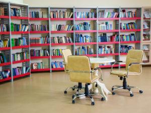 Лмф мебель для библиотеки.